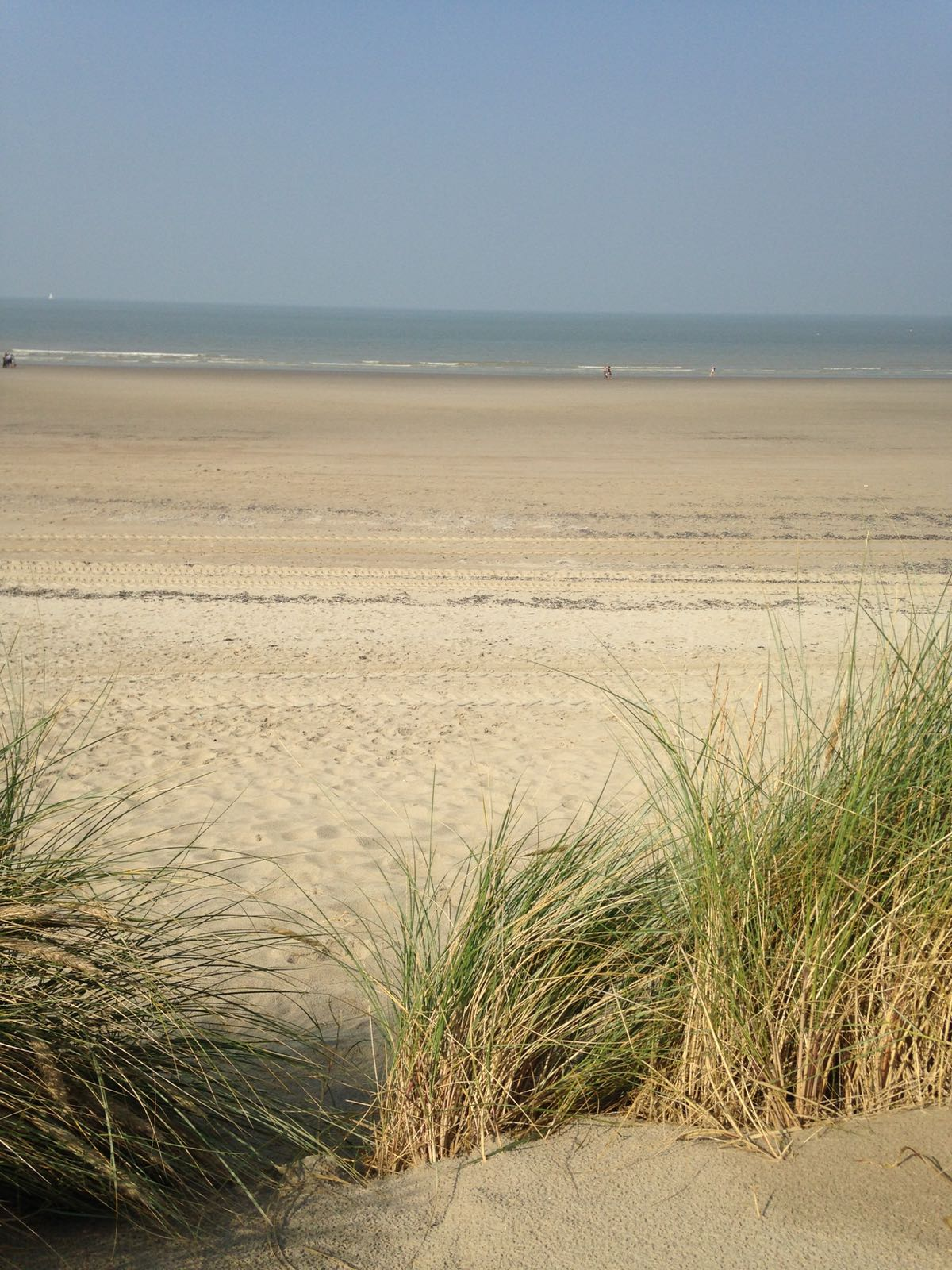 http://www.nordsee-chalet.com/wp-content/uploads/2017/03/IMG-20170218-WA0017.jpg