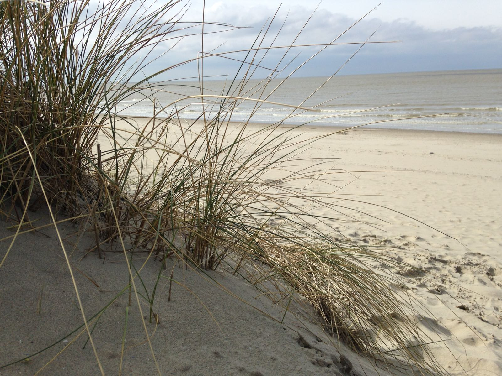 http://www.nordsee-chalet.com/wp-content/uploads/2017/03/IMG-20170218-WA0026.jpg