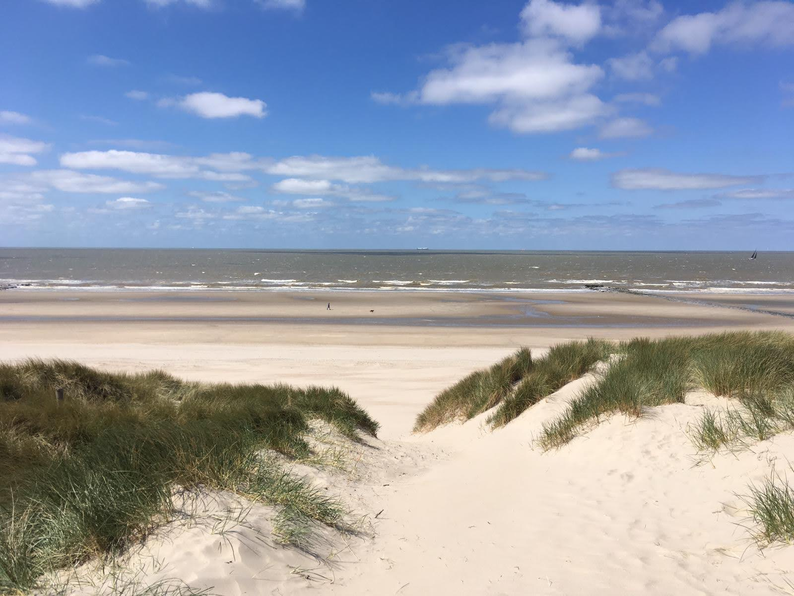 http://www.nordsee-chalet.com/wp-content/uploads/2021/03/IMG-20210309-WA0009.jpg